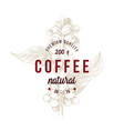 type emblem over hand drawn coffee branch package vector image