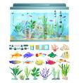 aquarium with fish and decoration vector image