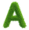 capital letter a from grass on white vector image