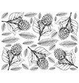 hand drawn wallpaper of korean black raspberries vector image vector image