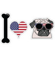 I love pug with american symbols vector image vector image