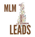 mlm leads text background word cloud concept vector image vector image