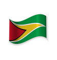 the flag of guyana vector image vector image