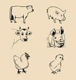 Artistic farm animal design vector image