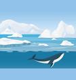 beautiful arctic landscape vector image vector image