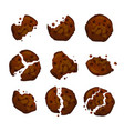chocolate chip cookies vector image vector image