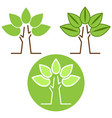 nature green tree icon set vector image vector image