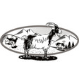 oval frame with goats grazing vector image vector image