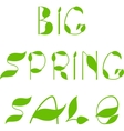 Spring sale text design template vector image