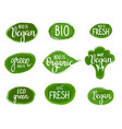 lettering eco green nature organic vegan vector image