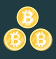 bitcoin digital crypto currency sign vector image vector image