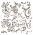collection of hand drawn floral swirls vector image vector image