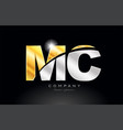 combination letter mc m c alphabet with gold vector image vector image