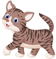 Cute cat cartoon walking vector image vector image
