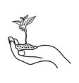growing plant or sprout with soil in left hand vector image vector image