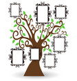 pictures frame tree vector image