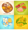 Protein Food Concept 4 Icons square vector image