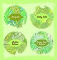 4-mix lettuce set vector image