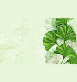 green background with leaves ginkgo biloba vector image vector image