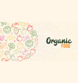 organic food concept color outline vegetable icons vector image vector image