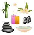 spa salon set with stones and bamboo vector image