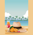 summer and beach cartoons vector image vector image