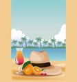 summer and beach cartoons vector image