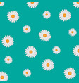 white daisy background vector image vector image