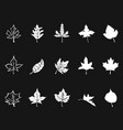 white maple icons on black background vector image vector image