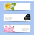 Set of card in spa style vector image