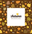 autumn leaves seamless pattern for new background vector image vector image