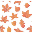 autumn seamless pattern with oak maple beech vector image vector image