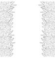 marigold flower - tagetes outline border vector image vector image
