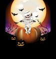 Mummy and pumpkins