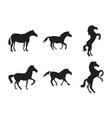 set horse icon design template vector image vector image
