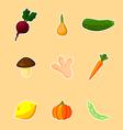 Vegetables - set vector image