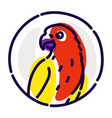 a cartoon parrot flat icon image is isolated on vector image