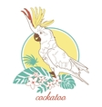 cockatoo vector image