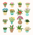 colorful set of flowers vector image vector image