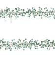floral card or banner design with eucalyptus vector image vector image