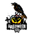 halloween pumpkin with raven vector image