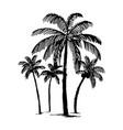 hand drawn sketch of palm logo vector image vector image