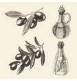Olive Branch Bottle Set Hand Drawn vector image vector image