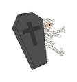 coffin halloween mummy vector image vector image