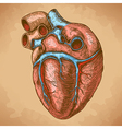 engraving heart retro vector image vector image