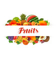 fruits banner natural food greengrocery concept vector image vector image
