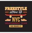 skateboard graphic design for t-shirt NYC vector image