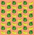 Watermelon and banana vector image vector image
