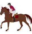 young horseman riding elegant horse color vector image vector image