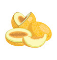 cartoon melon juicy sliced fruit drawing vector image vector image